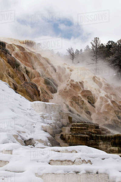 USA, Wyoming, Yellowstone National Park. Mammoth Hot Springs scenic. Rights-managed stock photo