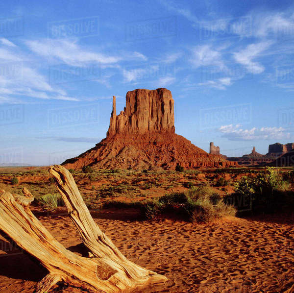 USA, Arizona and Utah, Mitten Butte and Bleached wood, Monument Valley, Navajo Tribal Park Rights-managed stock photo