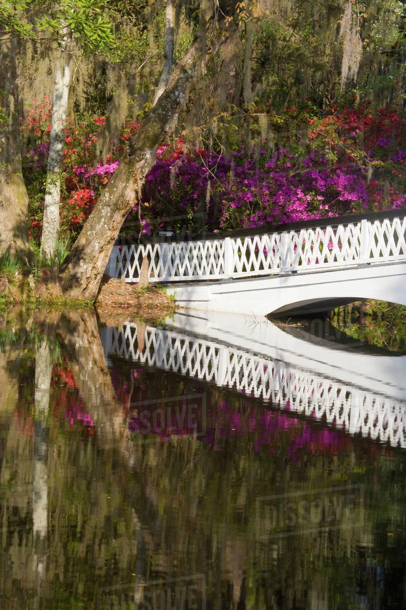 USA, South Carolina, Charleston. Bridge in Magnolia Plantation and ...