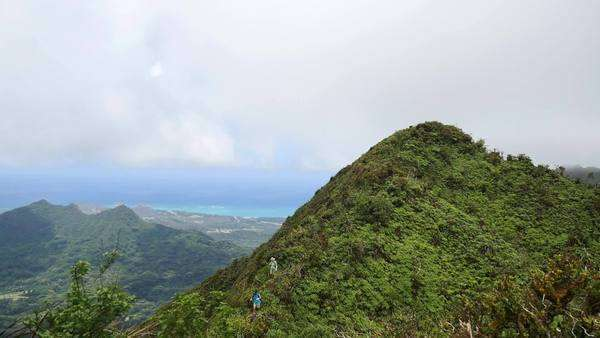 Hiking, Koolau Mountantain redge, Honolulu, Oahu, Hawaii Rights-managed stock video