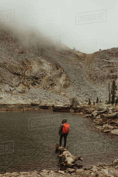 Rear view of male hiker looking out from lake, Mineral King, Sequoia National Park, California, USA Royalty-free stock photo