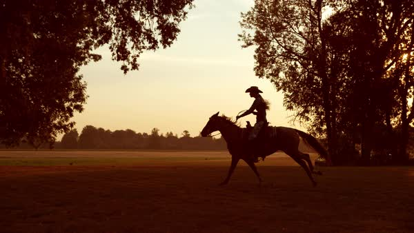 Woman horseback riding at sunrise in super slow motion Royalty-free stock video