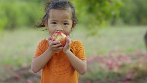 Young girl in Fall eating apple Royalty-free stock video