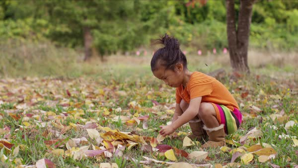 Young girl in Fall picking up leaves Royalty-free stock video