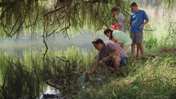 Kids at outdoor school get water samples from pond Royalty-free stock video