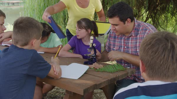 Kids at outdoor school learn about nature Royalty-free stock video