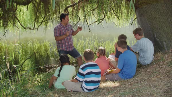 Kids at outdoor school have group lesson by pond Royalty-free stock video