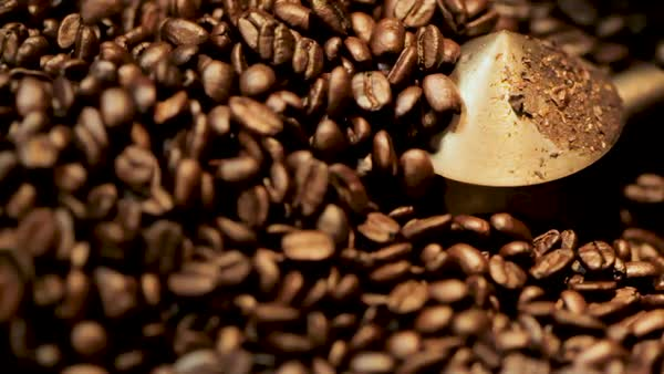 Static shot of roasted coffee beans rotating in a coffee roaster's cooling tray Royalty-free stock video