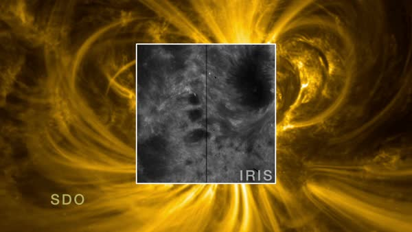 Animation showing two views of an X1.6-class solar flare, imaged by the solar observation satellites IRIS (Interface Region Imaging Spectrograph) and SDO (Solar Dynamics Observatory) on September 10, 2014. Rights-managed stock video