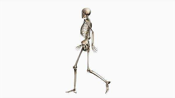animation of a walking chrome human skeleton on a black background, Skeleton