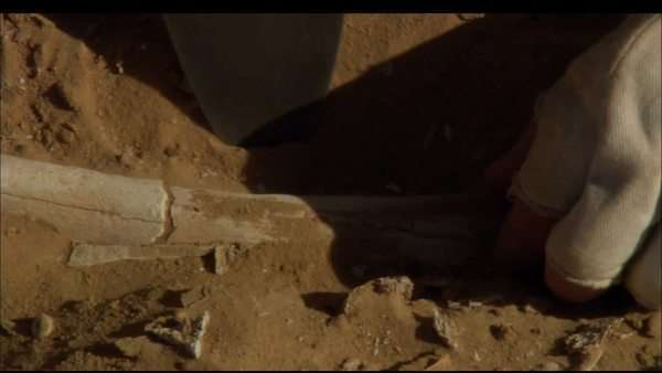 Close up of man's hand excavating artefact with tool in archaeological dig, Northern Africa Rights-managed stock video