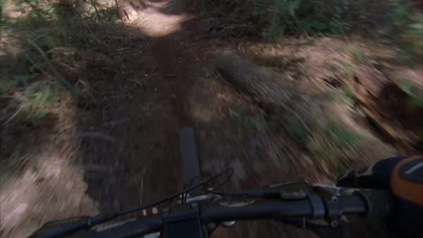 POV shot from a mountain bike going downhill along a forest trail Rights-managed stock video