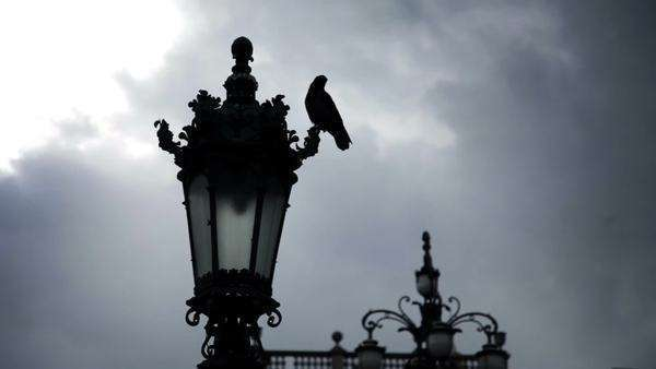 a town near sea in Italy and street lamp with a pigeon Royalty-free stock video