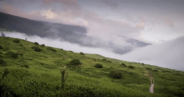 Kahikinui, Maui scenic in Hawaii with clouds coming up hill. Royalty-free stock video