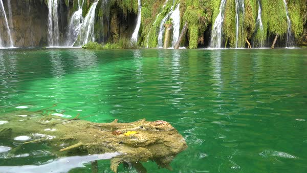 Tilt up from green pool to beautiful waterfall at Plitvice National Park in Croatia. Royalty-free stock video