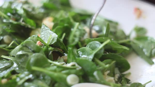 Handheld shot of a green leaf salad plate Royalty-free stock video