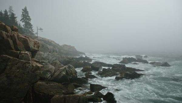Foggy coastal landscape with waves crashing on rocks Royalty-free stock video