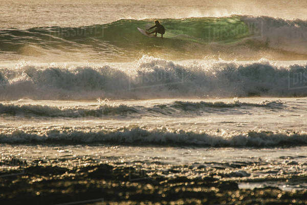 Surfer carves perfect wave in afternoon light Royalty-free stock photo