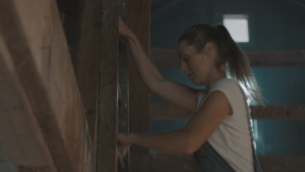 A young woman climbing up ladder in barn Royalty-free stock video