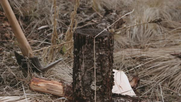 Hand-held shot of a man splitting firewood Royalty-free stock video