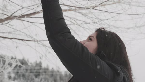 Low-angle shot of a young woman standing under a frost covered tree Royalty-free stock video