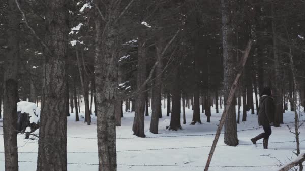 Tracking shot of a woman walking in a snow covered forest Royalty-free stock video