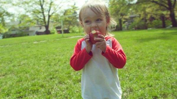 Little boy walks around field snacking on an apple Royalty-free stock video