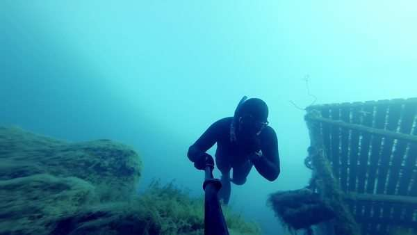 Freediver freefalling into a deep cliff (20m) underwater Royalty-free stock video