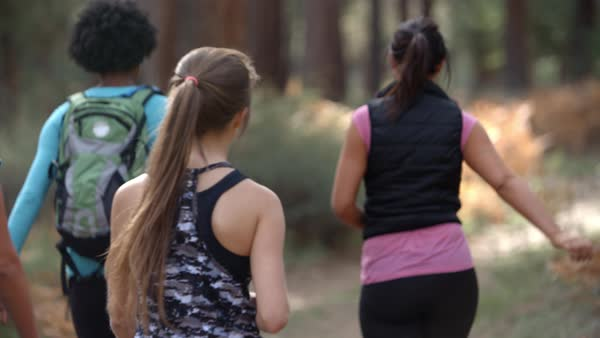 Group of women runners walking in forest talking, back view Royalty-free stock video