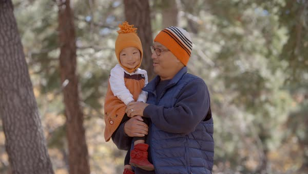 Father carrying toddler his daughter during walk in a forest Royalty-free stock video