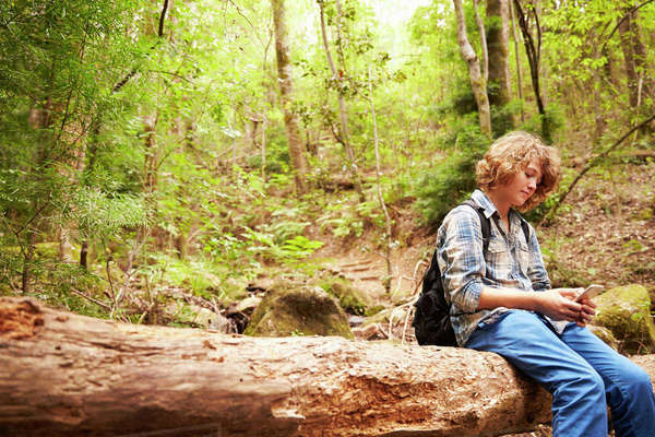 Boy sitting on a fallen tree in a forest using a smartphone Royalty-free stock photo