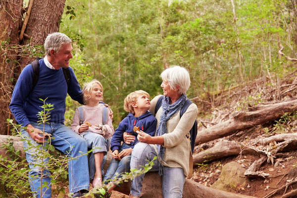Grandparents and grandchildren eating together in a forest Royalty-free stock photo