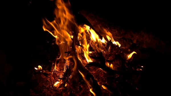 Fire burning at night, super slow motion 240fps Royalty-free stock video