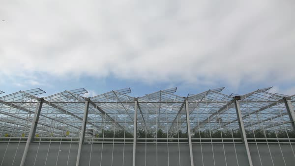 Timelapse shot of clouds drifting above a greenhouse Royalty-free stock video