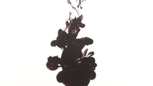 Front shot in slow motion of black watercolor dripping in water Royalty-free stock video