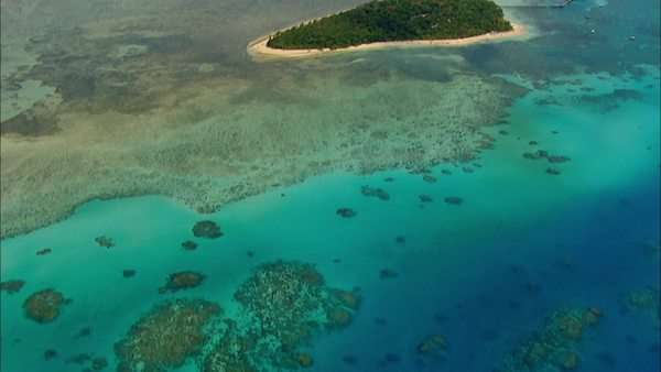 Aerial view showing water surface and coral reef scenery Rights-managed stock video