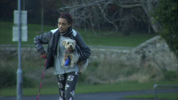 Medium long shot of young woman walking her dogs Rights-managed stock video