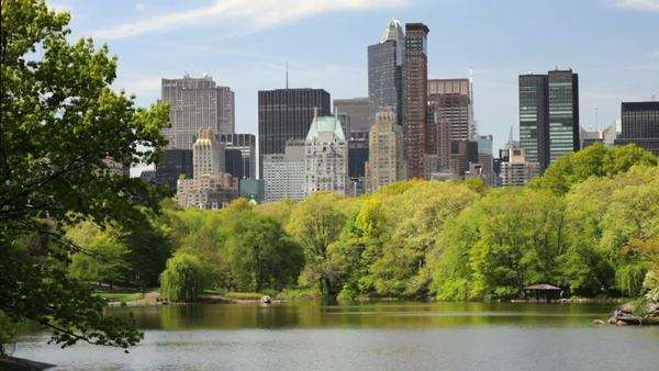 New York City skyline view through central park and lake Royalty-free stock video