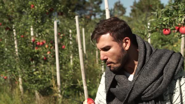 Medium shot of a man eating an apple in orchard Royalty-free stock video