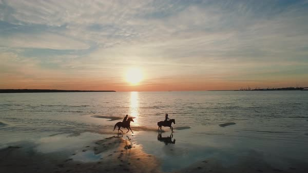 Two girls are riding horses on a beach. Horses run on water. Beautiful sunset is seen in this aerial shot. Royalty-free stock video