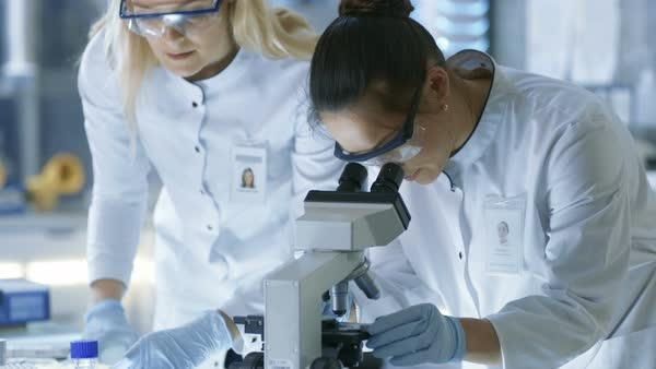 Medical research scientist drops sample on slide and her colleague examines it under microscope Royalty-free stock video