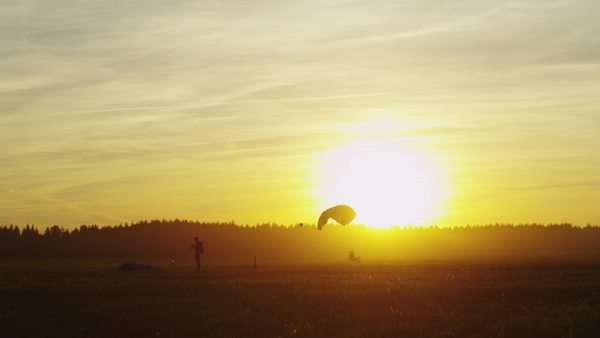 Skydivers are landing in sunset light Royalty-free stock video