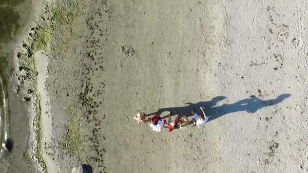 Aerial drone shot of people running on the beach while holding hands. Royalty-free stock video