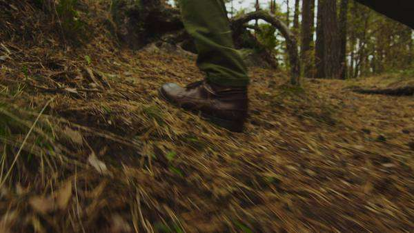 Hiker in close-up slow motion leg shot walks uphill in the forest in autumn. Royalty-free stock video