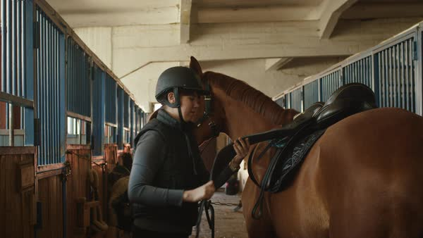 Young jockey is preparing a horse for a ride in stable. Royalty-free stock video