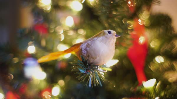 Gimbal shot of a Christmas ornament shaped like a bird Royalty-free stock video