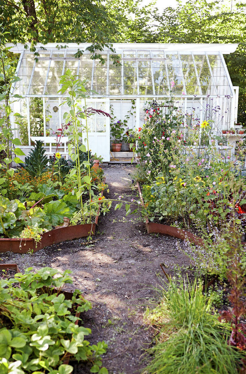 Vegetable Patch And Greenhouse