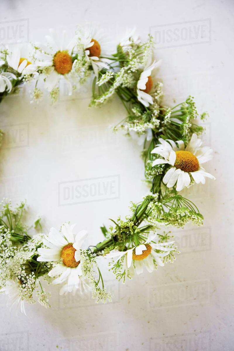 Flower Wreath On White Background Stock Photo Dissolve