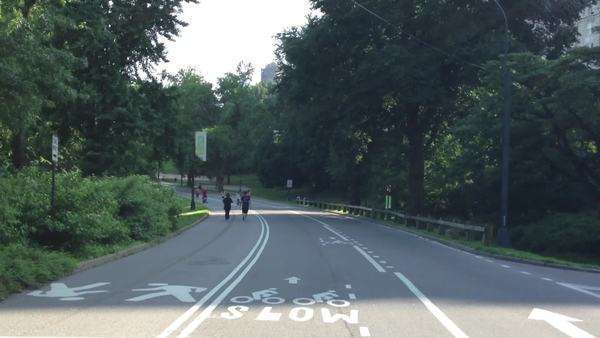 Central park by bike Royalty-free stock video