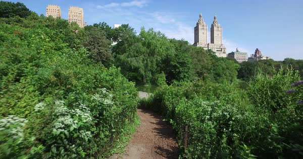 NEW YORK - Circa July, 2016 - A personal perspective walking on a trail near the Lake in Central Park with upscale apartment buildings on Central Park West in the distance. Royalty-free stock video